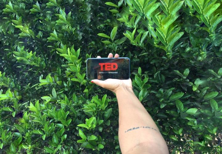 Mes 5 TEDx Talks préférés : inspirants etmotivants