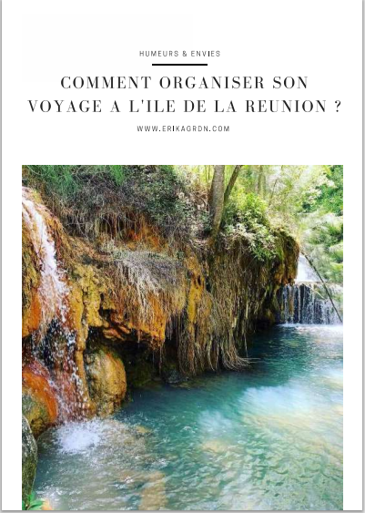 E-Book Comment organiser son séjour à La Réunion