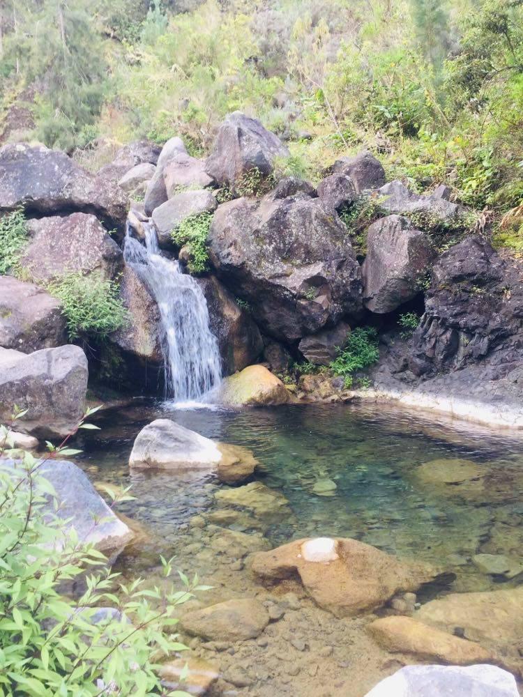 Bassin Bleu à Cilaos